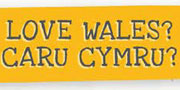 Fund for Wales